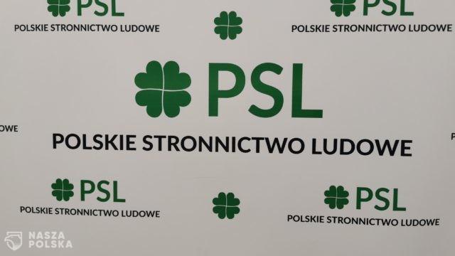 PSL namawia PO do poparcia propozycji wpisania do konstytucji członkostwa Polski w UE