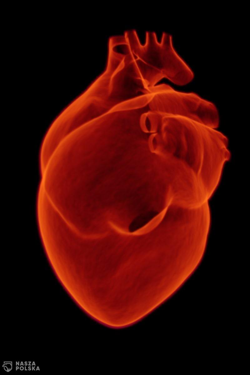 Prof. Mitkowski: Ryzyko zawału serca, związanego z COVID-19, istnieje, ale nie jest najistotniejszym powikłaniem