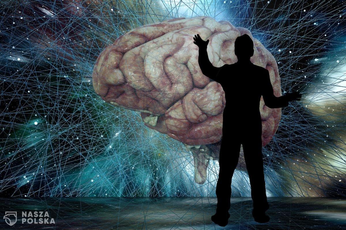 """Mózg człowieka ma swój """"odcisk palca"""""""