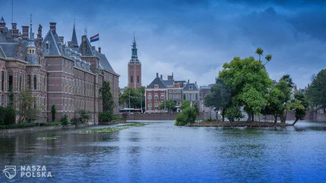 Holandia/ Haga wprowadza zakaz reklamowania samochodów benzynowych i samolotów
